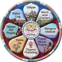 Tarthang Tulku projects